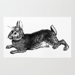 The Rabbit and Roses   Black and White Rug