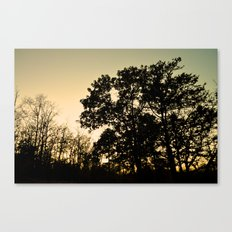 The Silhouetted Sunset Canvas Print