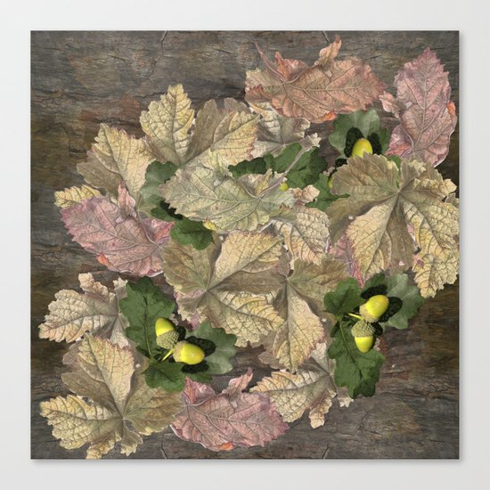 Acorns in Autumn Canvas Print