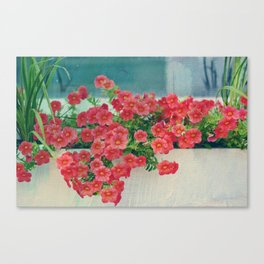 Painterly Summer Floral Coral Red Million Bells in Beachy Window Box Canvas Print