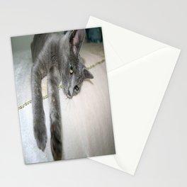 Russian Grey Cross Tabby Cat  Stationery Cards