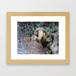 Pastel Rudy Framed Art Print