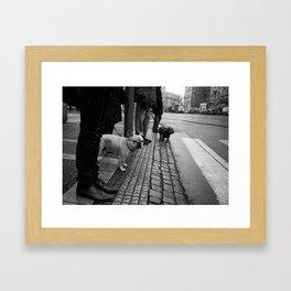 Dogs like trams Framed Art Print
