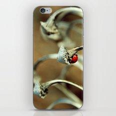 Ladybug iPhone & iPod Skin