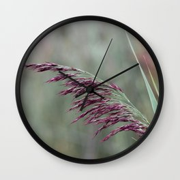 Common reed flower stalk Wall Clock