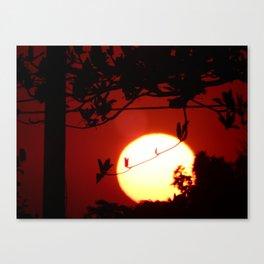 The sun of the Brazil - (O sol do Brasil) Canvas Print