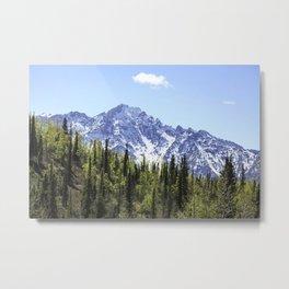 Alaskan Spring Mountains Metal Print