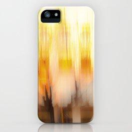 Nice Landscape iPhone Case