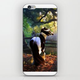 Gypsy Fall iPhone Skin