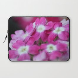 Pink White Verbena Flowers Laptop Sleeve