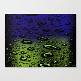 Night And Day Dew Canvas Print