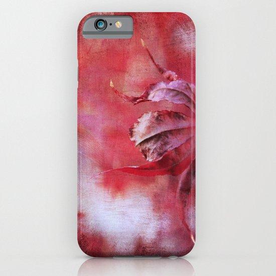 Wisdom's Curl iPhone & iPod Case