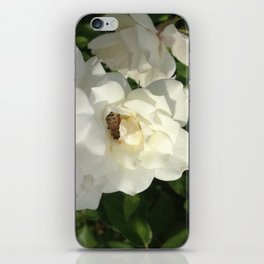 Bee Yoga II iPhone Skin