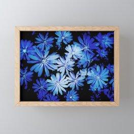 Cornflowers Framed Mini Art Print