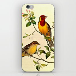 Red-Headed Bunting iPhone Skin