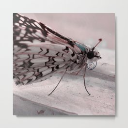 Chill Butterfly Metal Print