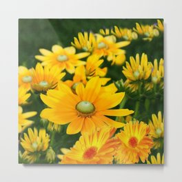 GOLDEN YELLOW  FLOWERS  GARDEN Metal Print