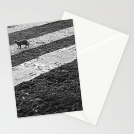 The Cats Collection (3) Stationery Cards