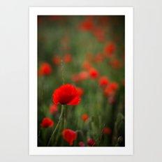 Sea of Red Art Print
