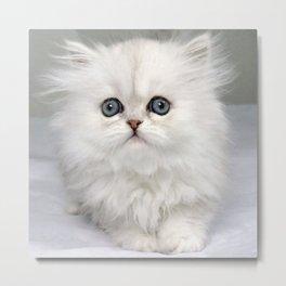 White Kitty Cat Metal Print