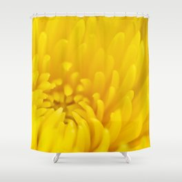 Endless Petal Kisses Shower Curtain