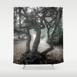 IN THE FOREST IN AUSTRALIA Shower Curtain