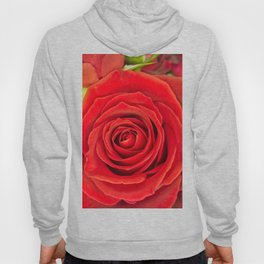 Red Rose for Love Hoody