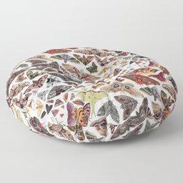 Moths of North America Pattern Floor Pillow
