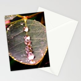 Water Drops Leaf Stationery Cards