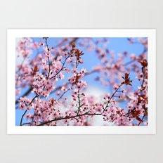 Pink spring. Sky dreams Art Print