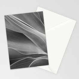 Mono Agave Attenuata Stationery Cards
