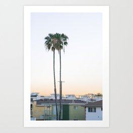 california dreamin Art Print