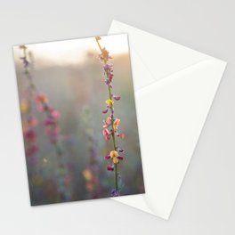 Wildflowers at Sunse Stationery Cards