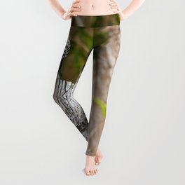 The sanctuary Leggings