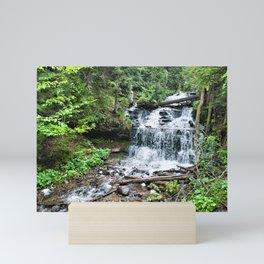 Wagner Falls, Munising, Michigan Mini Art Print