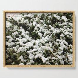 Snow Bush Serving Tray