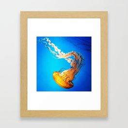 Golden Jellyfish Framed Art Print