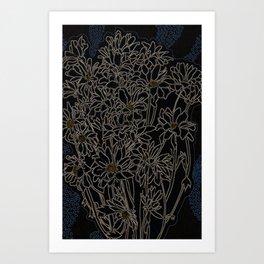 Daisy Chrysanthemum,  black Art Print