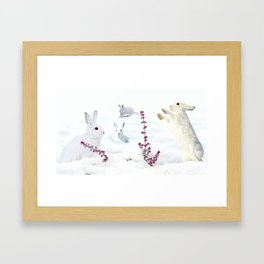 White rabbits dancing around red erica in snow mountain. Framed Art Print