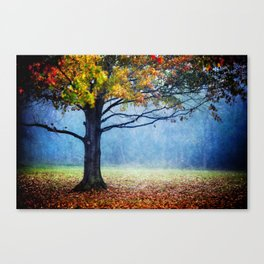 Nature's Generosity Canvas Print