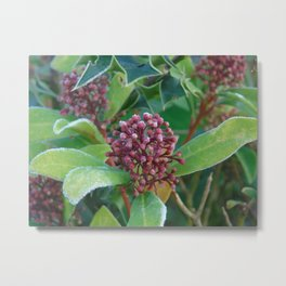 Holly I Love You Metal Print