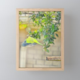 I'll Fly Away Framed Mini Art Print