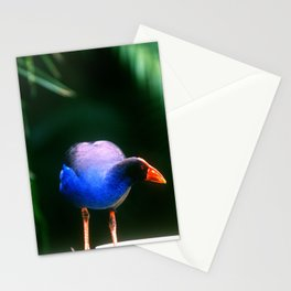 Blue Violet Bird In Remarkable Papua New Guinea Stationery Cards