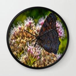 Peacock Butterfly Underside Wall Clock