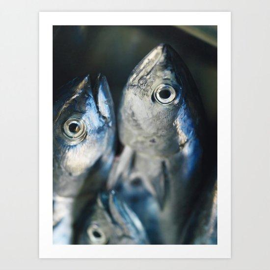 Tuna fish - still life - fine art - photo - print, high quality,macro, interior design, wall decor Art Print