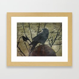 The Raven Speaks - Crow on Stone A675 Framed Art Print