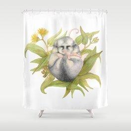 Mountain Pygmy Possum  Shower Curtain