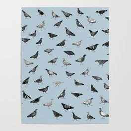 Pigeons Doing Pigeon Things Poster