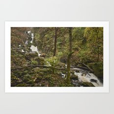 Lodore Falls waterfall after heavy rain. Borrowdale, Cumbria, UK. Art Print