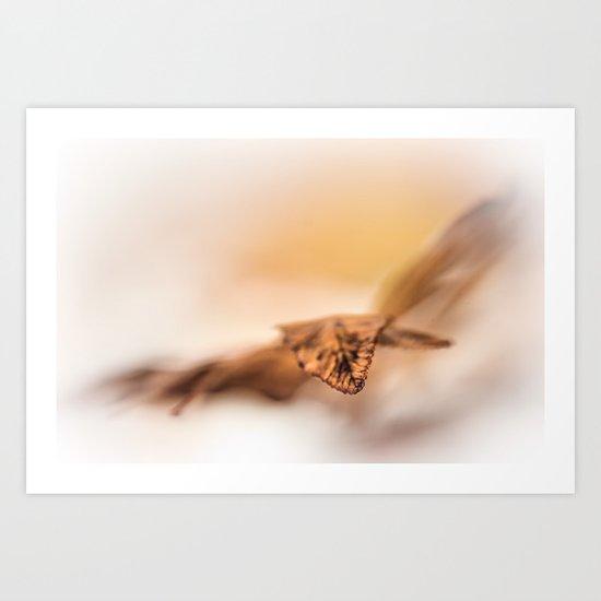 Autumn flies... Art Print